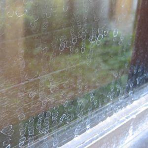 ガラス ウロコ 取り 窓
